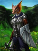 Kavarra Dragonborn Warrior by Tidma