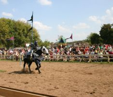 Jousting - Charge 4 by Furaha015