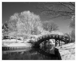 Japanese Bridge IR by Captain-Galant