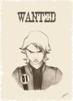 Wanted for Theft from Numerous Restaurants by TheGimyo