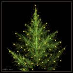 Christmas Tree by Colliemom