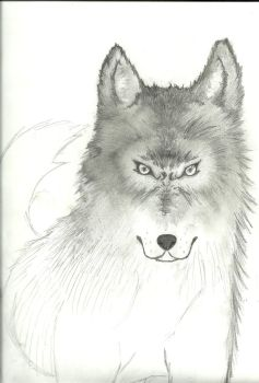 wolf WIP 2 by SoraTwinblade