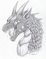 Dragon sketch by LauraRamirez