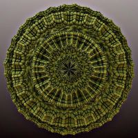 Malachite Disk by Jing-reed