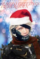 Holiday Greetings from Raiden by ProVoltageCosplay