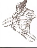 another wolverine by Flam-On