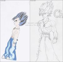 Chaos new and old by saiyanprincessx