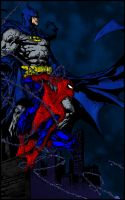 The Bat And The Spider by pascal-verhoef