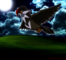 Night Hawk by PanzerKnacker73