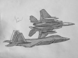F-15 Eagle and F-22 Raptor by KravinMorhead
