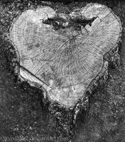 Weathered Heart by maxlake2