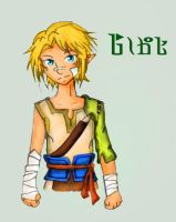 Ordon Ranch Link Recolour by naochandoodles