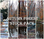 Autumn Forest Premium Stock Pack by Emerald-Depths