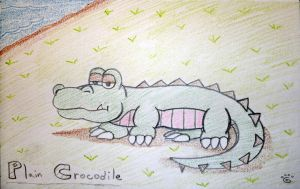 Plain Crocodile by Yoshistar-Baxter