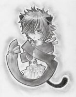 Cheshire Cat by TheFieryNuisance