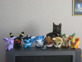 Eevee and it's evolutions by Twilightberry