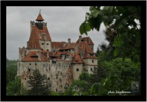 Bran Castle by liviugherman