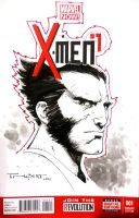 Wolverine sketch cover LBCC 2014 by aethibert
