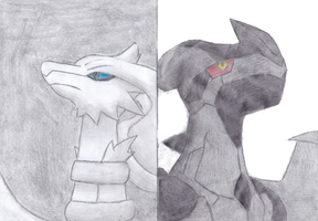 Black and White by FinnishPokemonFan96