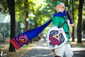 Hyrule Warriors Link by greengreencat