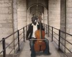 The Cello by Project-Drow