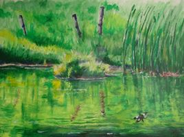 Summery Pond by cxcow