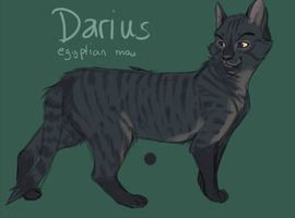 Darius Reference by NicoleSt