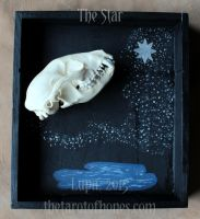 The Tarot of Bones: Star by lupagreenwolf