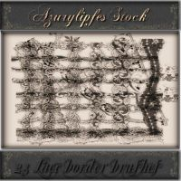 lace border brushes by AzurylipfesStock