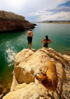 Family at Lake Powell by Pensquared4life