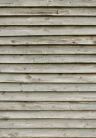 Wood Texture - 22 by AGF81