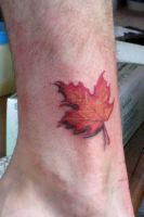 Maple Leaf by DanielleHope