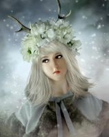 Snow in the forest by Miss-deviantE