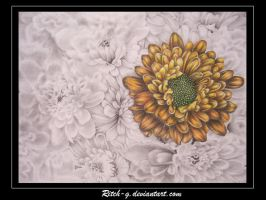 Flowers Drawing by ritch-g