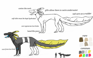 Axolotl Hound species ref. by CivetDog