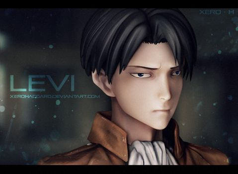 Levi - not a figure dammit by XeroHaggard