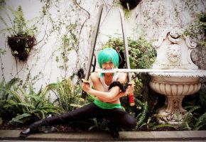 One Piece: (Female) Zoro 3 by hellozombie