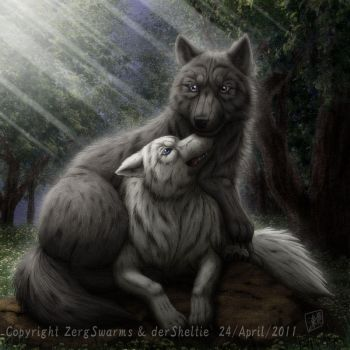 Wolf couple by SheltieWolf