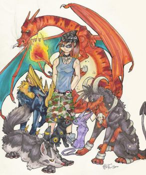 My Pokemon Team by wolvenillusion