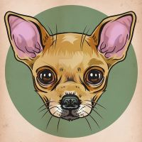 Chihuahua by MY-METAL-HAND