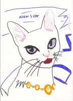 Allen's cat by SarahShirabuki8000