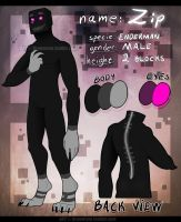 --Zip reference sheet-- by Drawotion