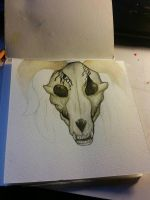 Skull painting wip by MissCorinne