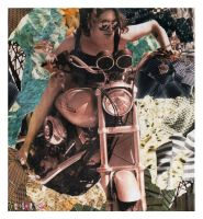 motorcycle collaged. by triscuitbox