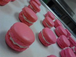 Strawberry Cheesecake Macaroons by xvlvxvr