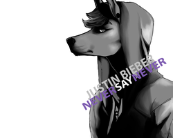 never say never by ceraxas