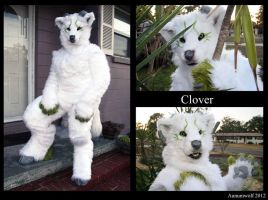 Clover full suit by Aunumwolf42