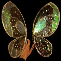 Glasswing Fairy Wings by Therione