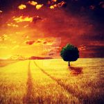 Golden Hour. .. by addy-ack