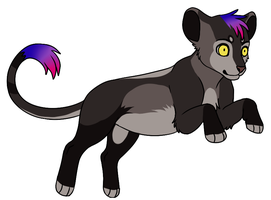 adoptable cub closed by CitruAdopts